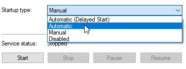 Set D42Netflow service start as automatic